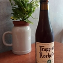 Trappistes Rochefort 8 - product image